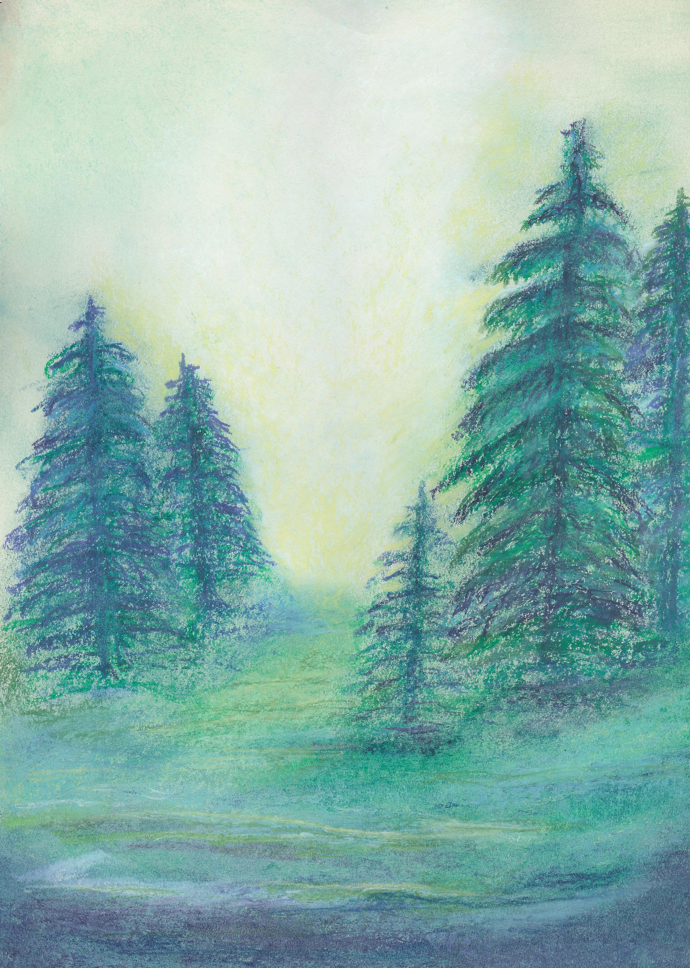 A Small Stand of Trees - Oil Pastel 8 X 11 - $90