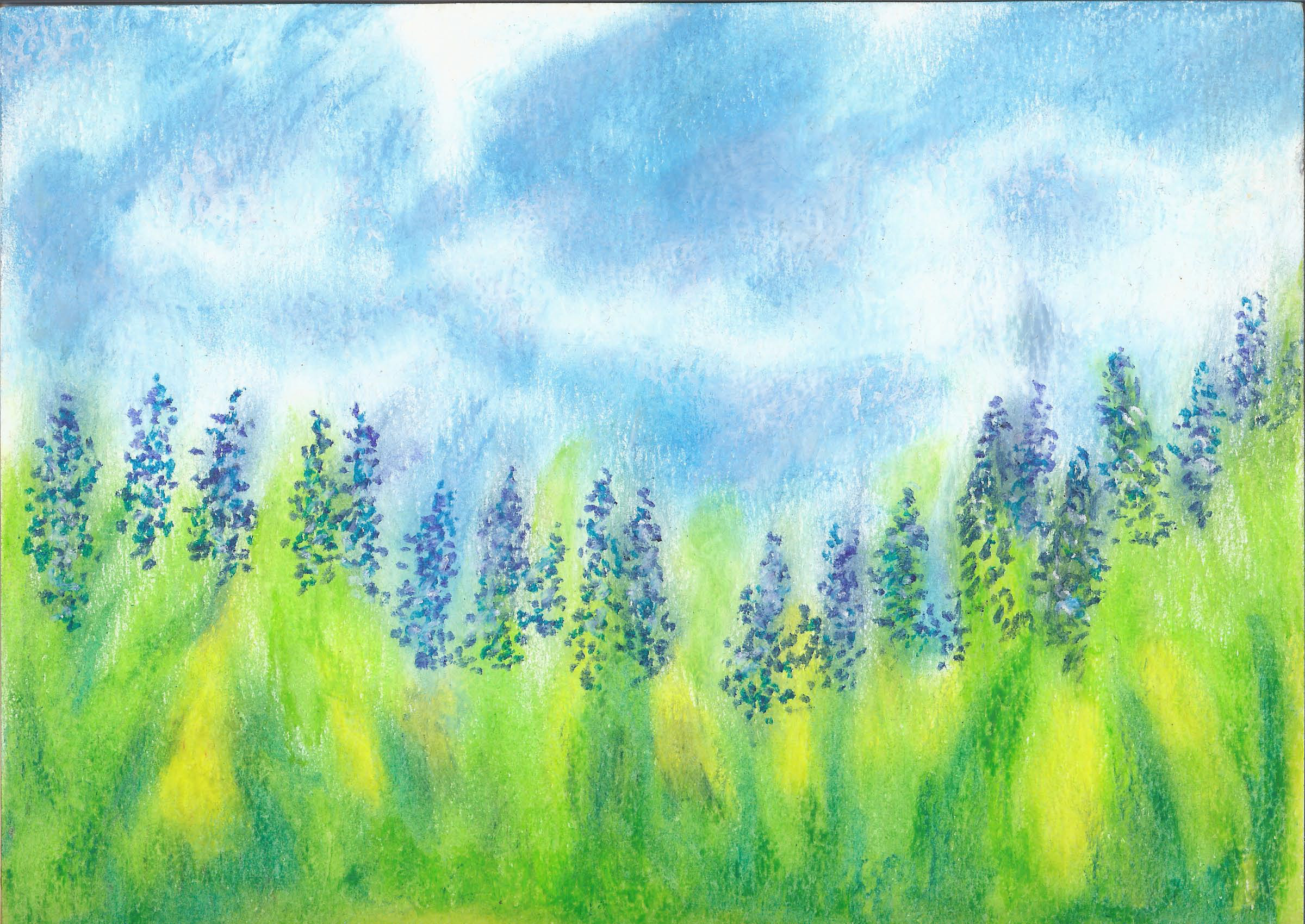 Lupin Meadow - Oil Pastel 9 X 12- $125