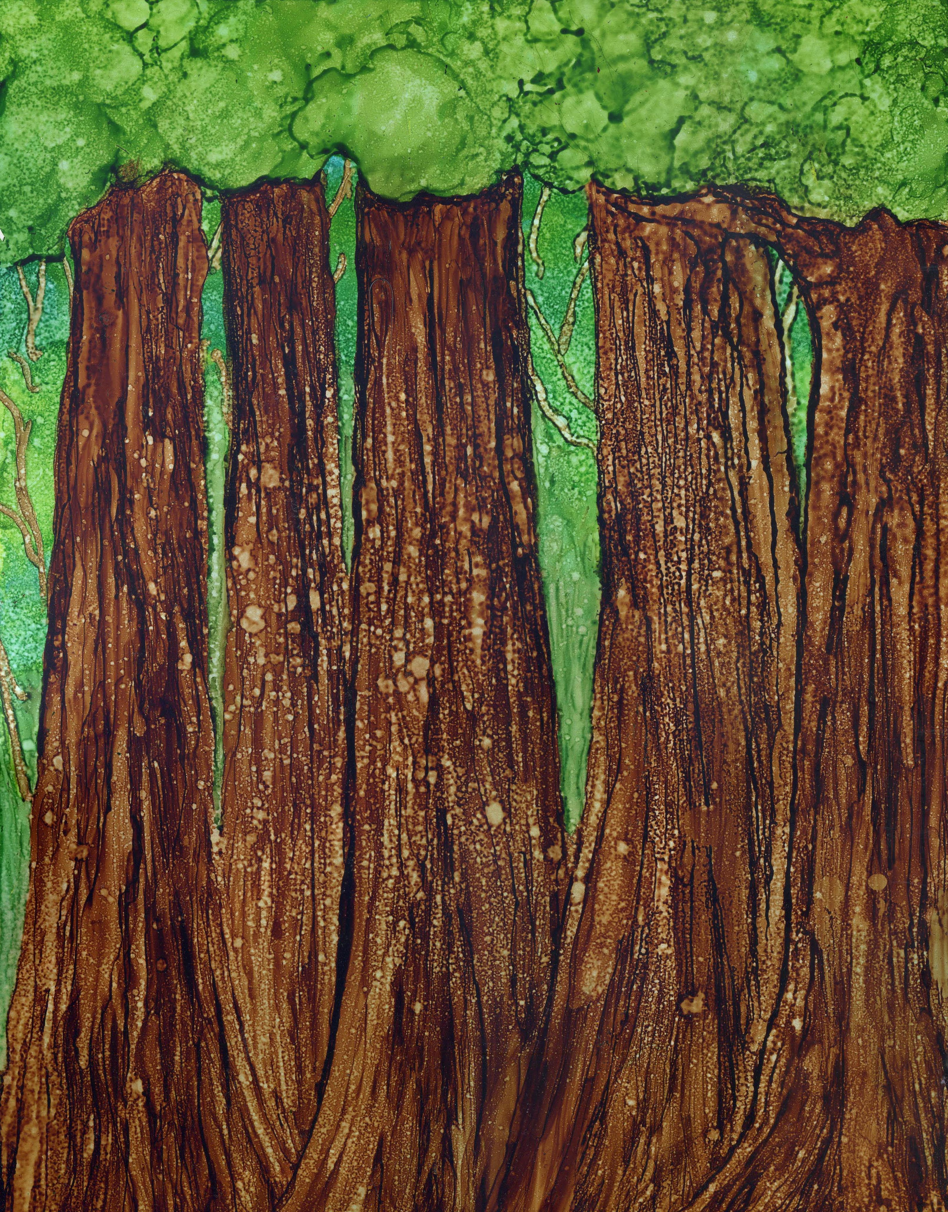 Redwood Forest -Alcohol Ink - 11 X 14 - $170