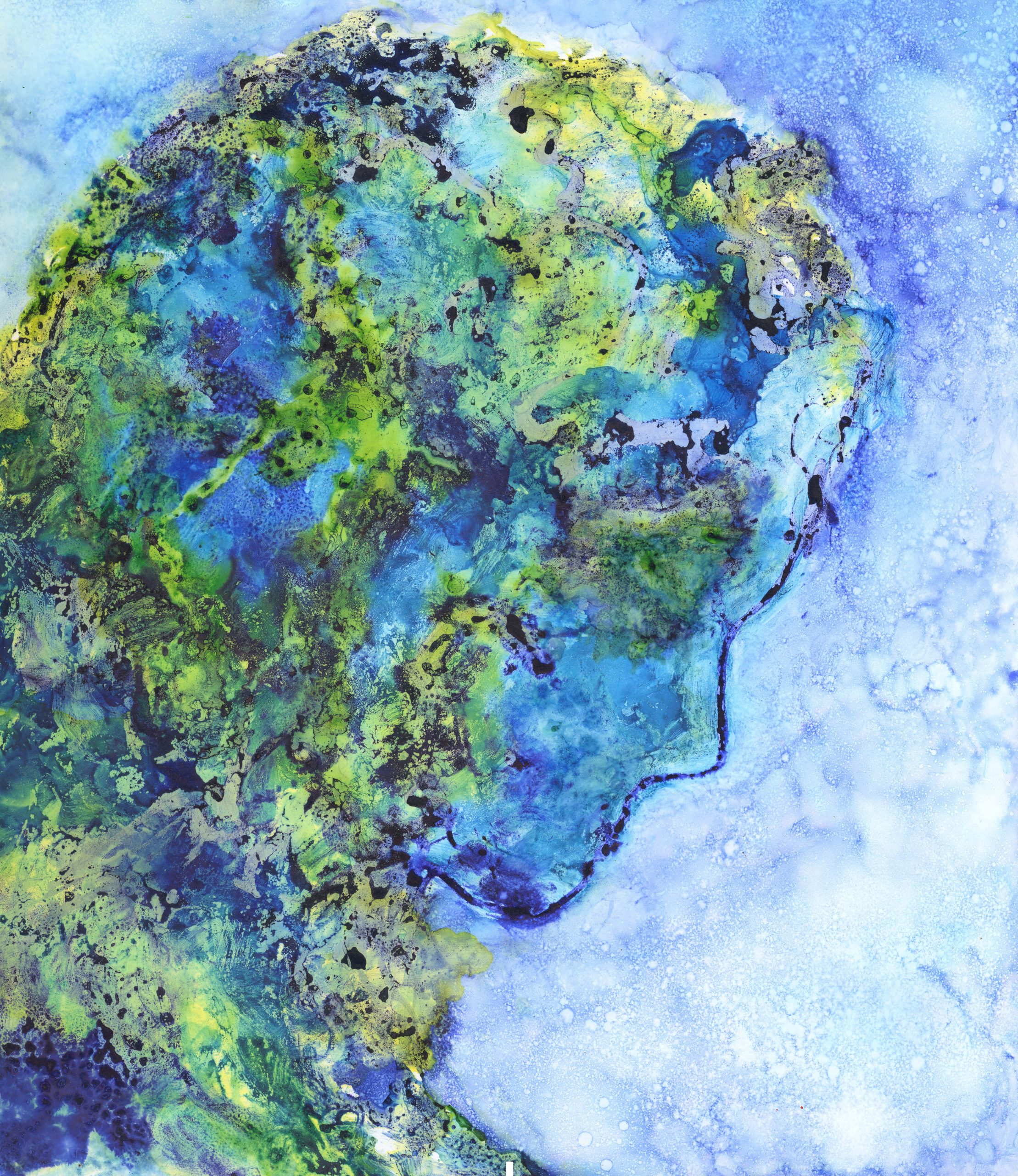 Thoughts - Alcohol Ink - 17 X 20 - $280