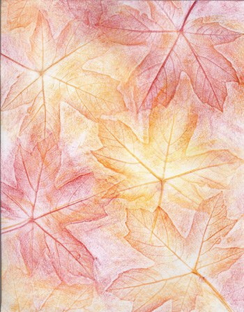 Autumn Maple Leaves Too - Crayon - 8 x 11 - $80