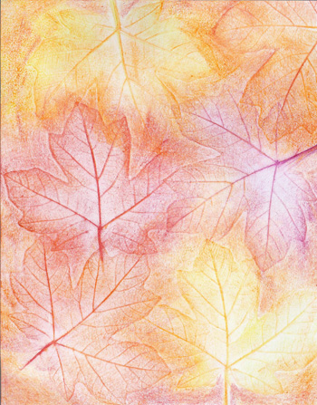 Autumn Maple Leaves - Crayon - 8 x 11 - $80