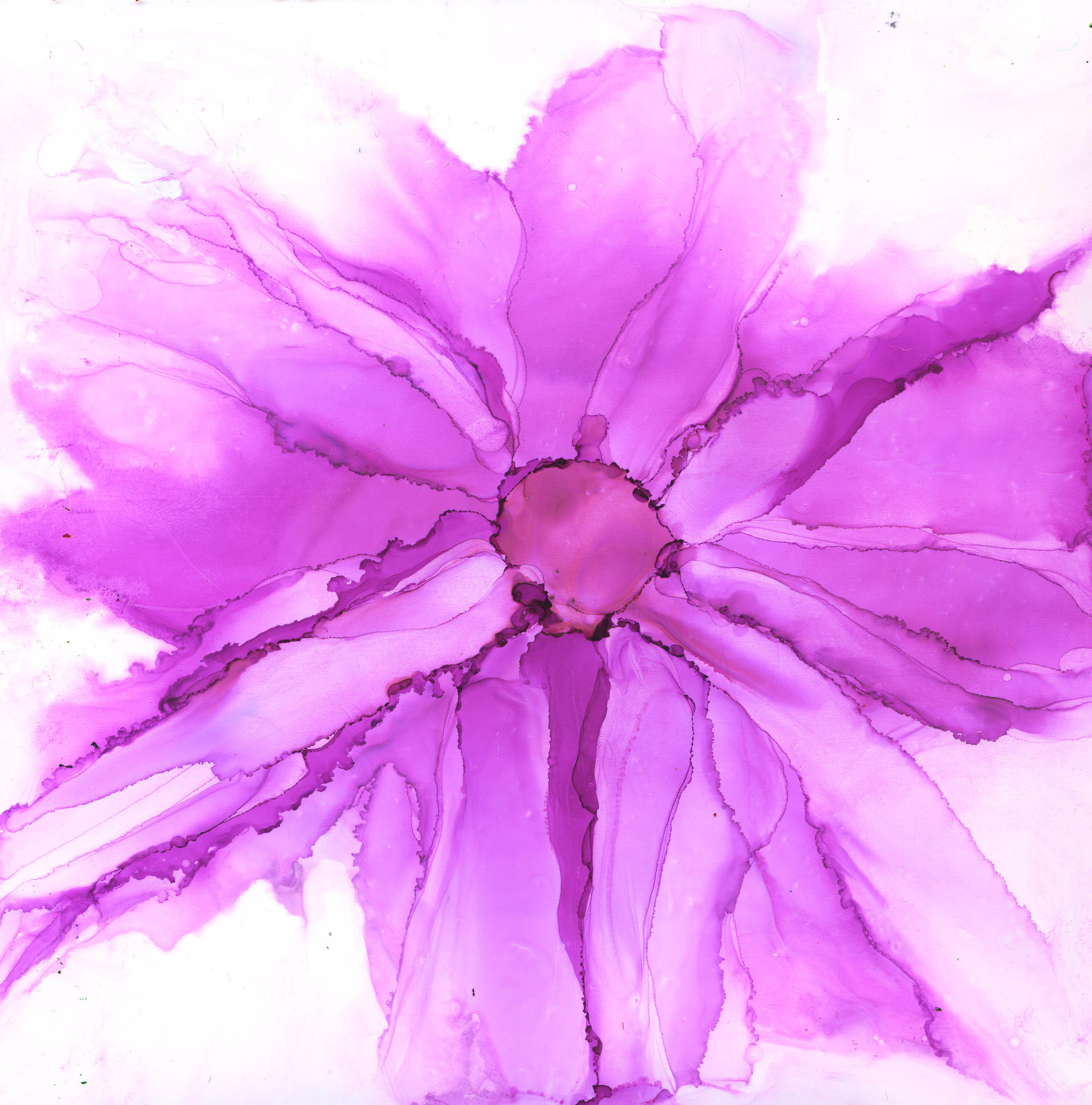 Magenta Flower - Alcohol Ink 8 X 8 $100